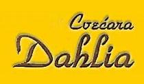 logo_dahlia